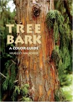 Tree Bark: A Color Guide