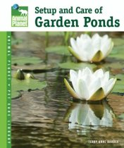 Setup & Care of Garden Ponds