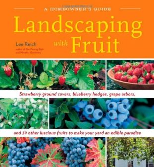 Landscaping With Fruit: Strawberry ground covers, blueberry hedges, grape arbors ...