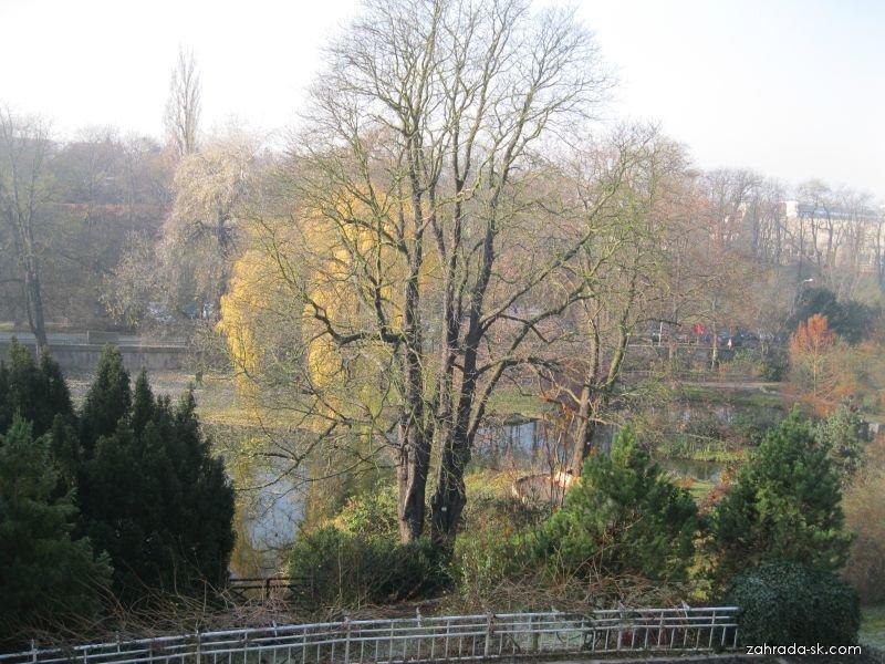 Botanická zahrada Praha Malešice